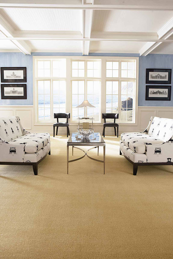 Living room with white and blue sofas on tan carpet with light blue and white painted walls.